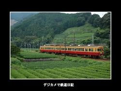 050903_fukuyo