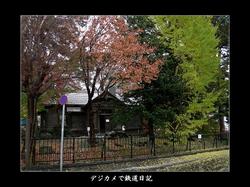 0512_Sapporo_seikatei1