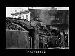 0601_umekoji_D51200