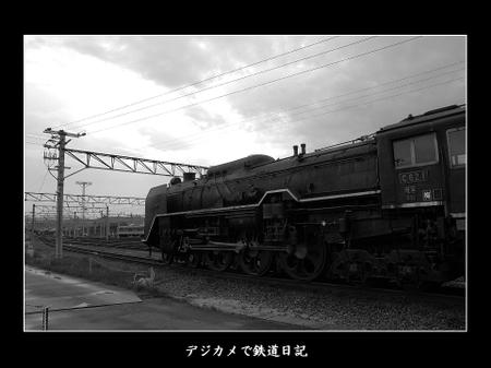 0607_umekoji_c621