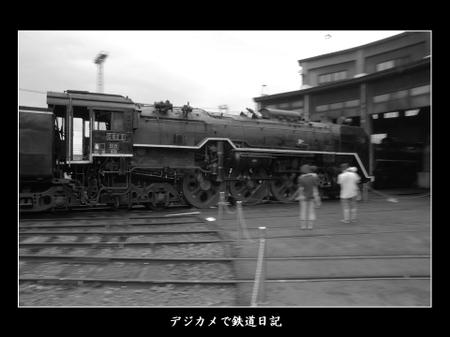 0607_umekoji_c622
