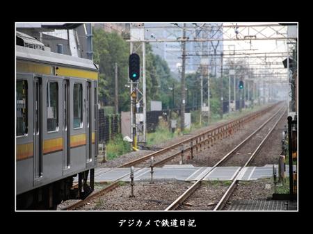 0611_209_kashimada