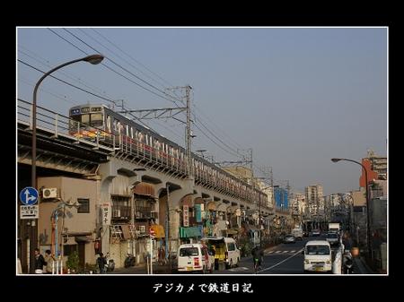 Ohimachi_8090