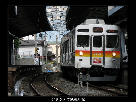 Togoshikoen_8538