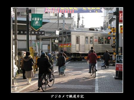 Togoshikohen_8500